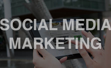 intriguemedia_services_funnelpage_socialmediamarketing